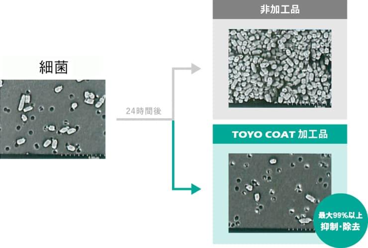 TOYO COAT加工品と非加工品の細菌増殖イメージ